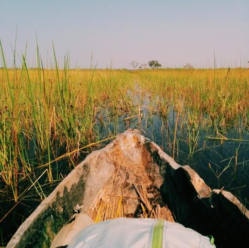 Botswana Okavando Delta Mokoro Canoe