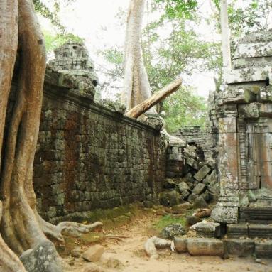 Angkor - Siam Reap, Cambodia